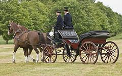 Hochzeitstransport
